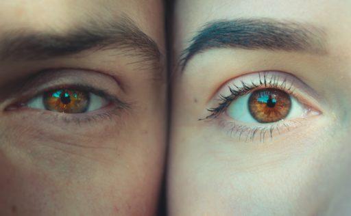 目のくまの種類